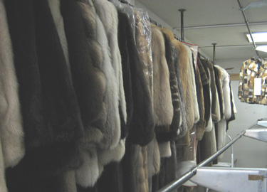 Fur Cleaning & Fur Storage